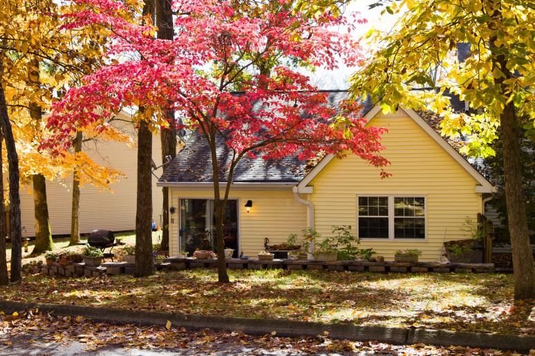 Fall-colors-rajhazare_MG_1621