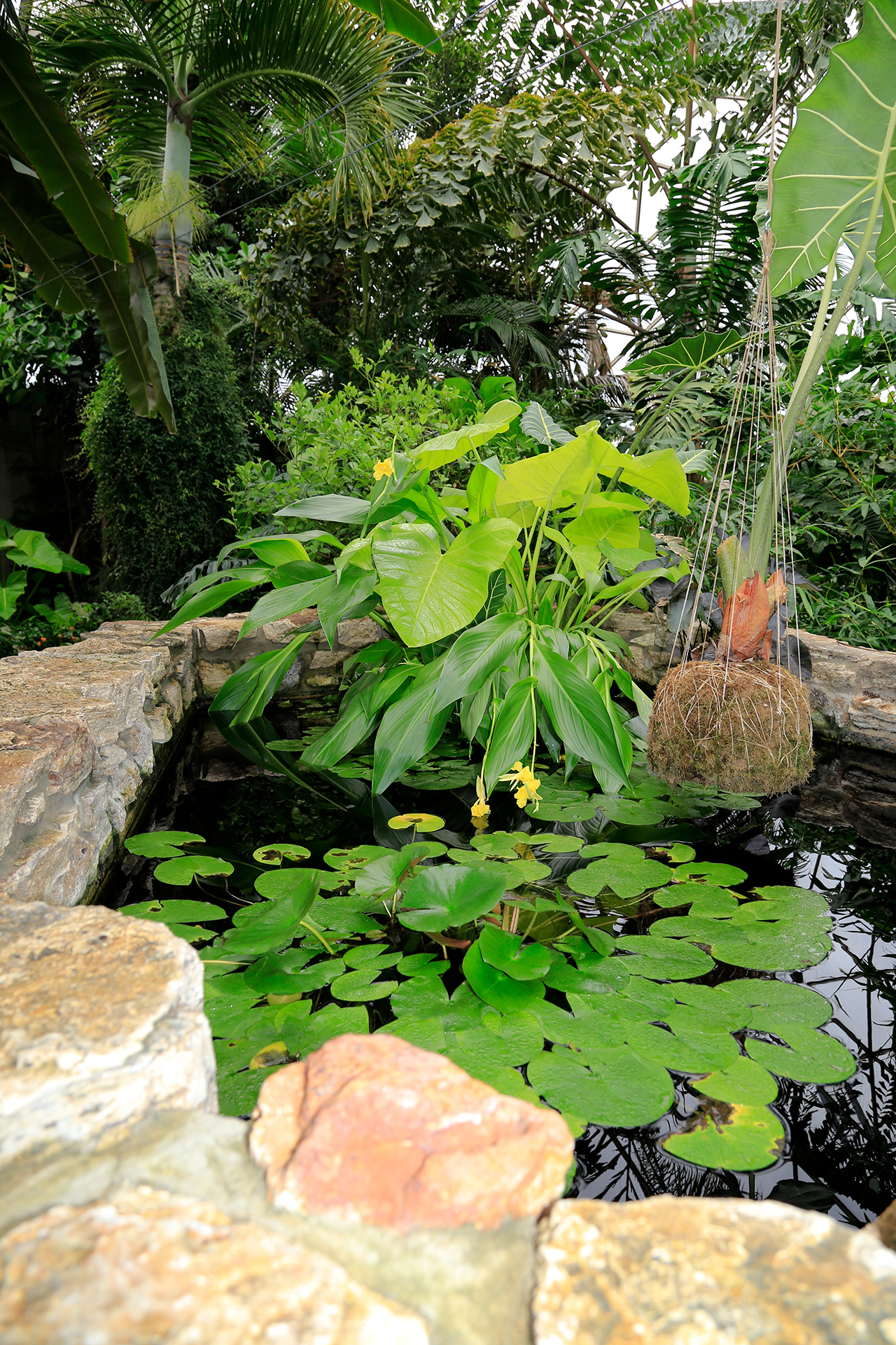 Greater Des Moines Botanical Garden. Photo By Raj H.