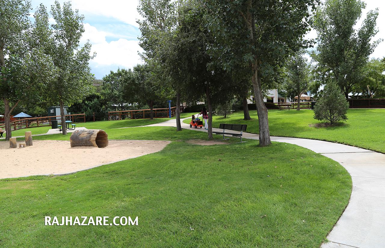 Amarillo Zoo. Photo by Raj H.